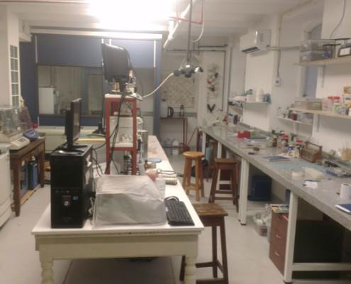 Laboratorio de Biocatálisis y Biotransformaciones 1